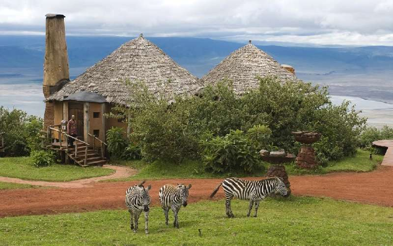 discover African luxury safari lodges
