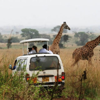 best safari in African
