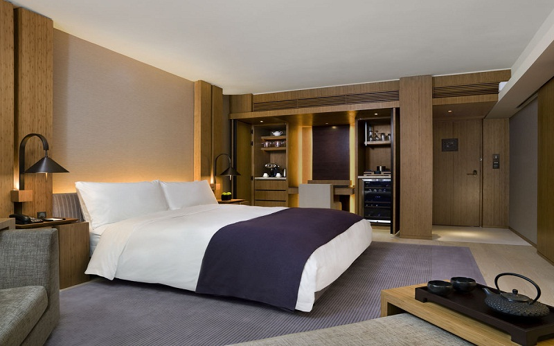 the LUXURY HOTELS