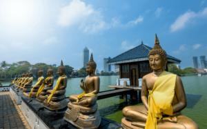 Honeymoon in Sri Lanka, between skyscrapers and Buddhist temples