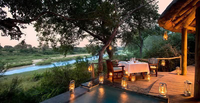 discover safari in Kruger National Park