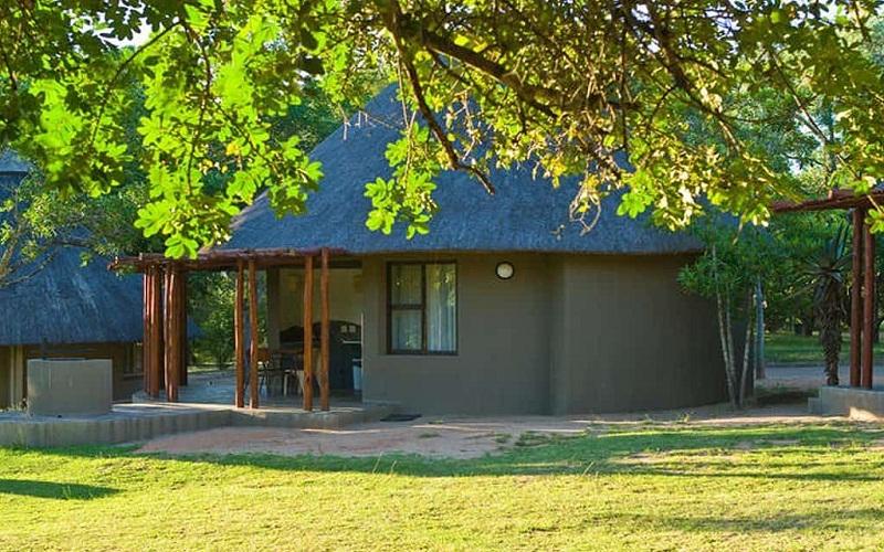 safari in Kruger National Park, South Africa