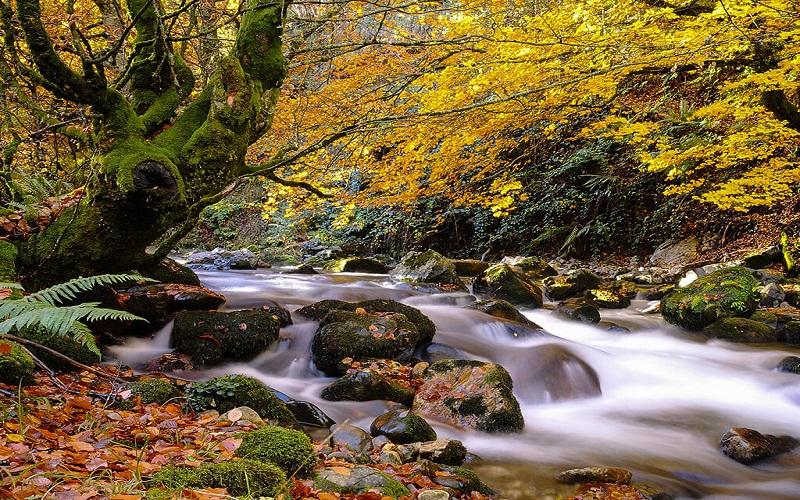 areas to enjoy Asturias, natural paradise