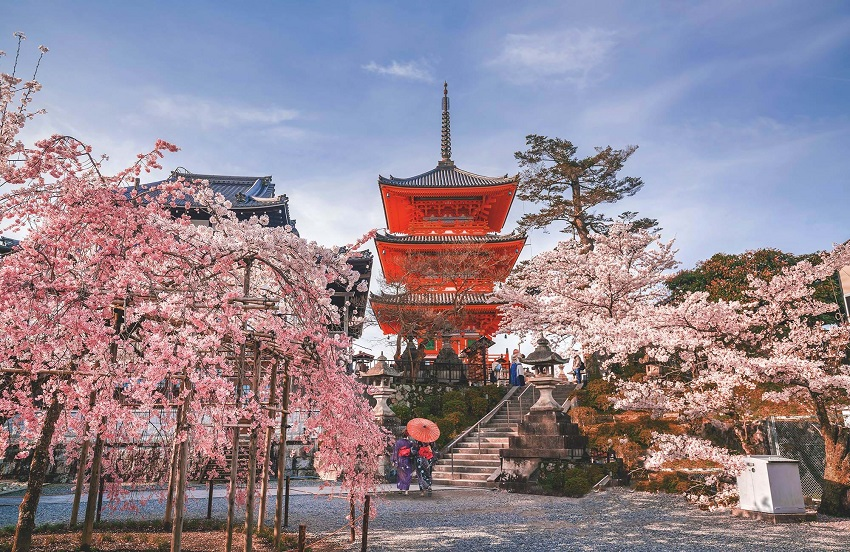 Honeymoon in Japan: all the tricks to plan the trip to the fullest