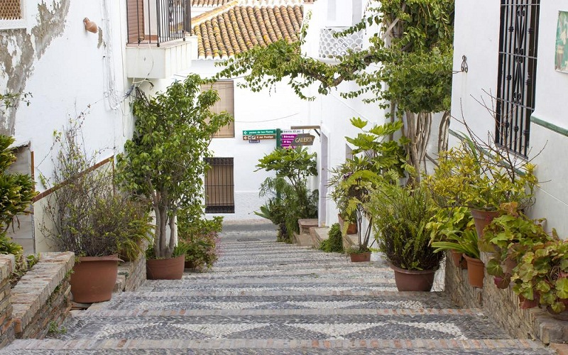 discover Andalusia Day