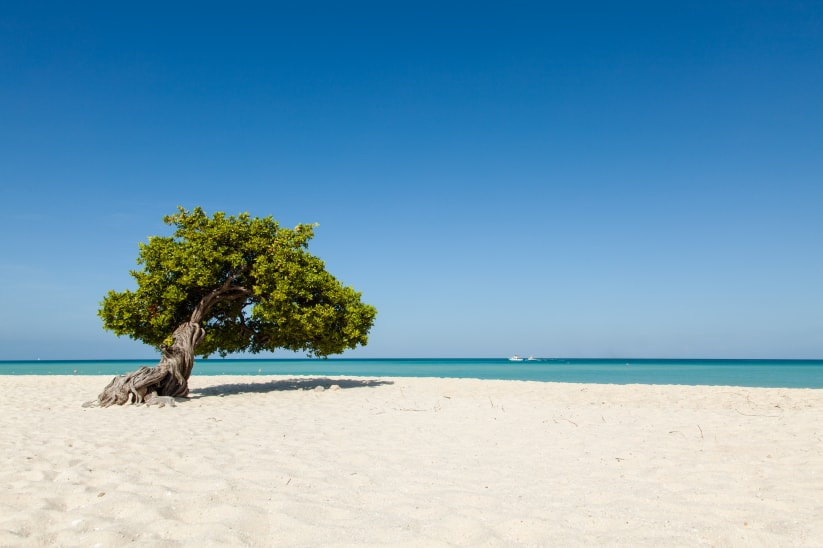 Aruba honeymoon: a journey with feet in the sand
