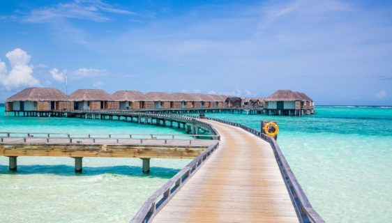 Honeymoon in the Maldives: a luxurious desire that comes true