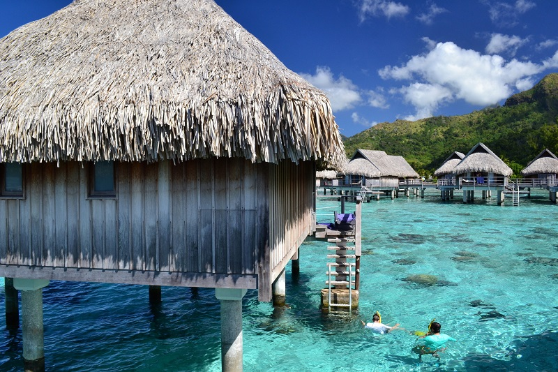 Tahiti: the journey you dream of from a life in French Polynesia