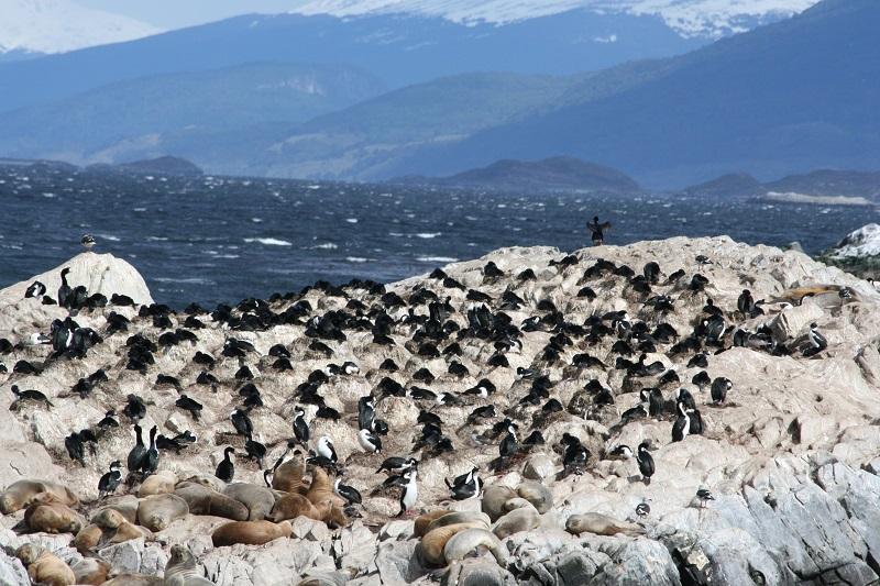 honeymoon in Patagonia